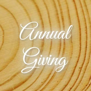 annual giving to the phoenixville library