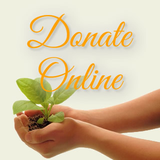 donate online to the phoenixville library