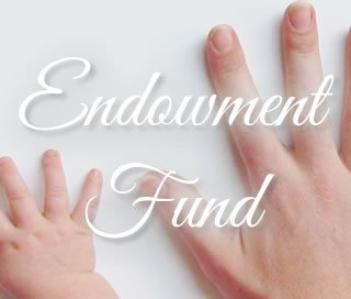 endowment fund phoenixville library